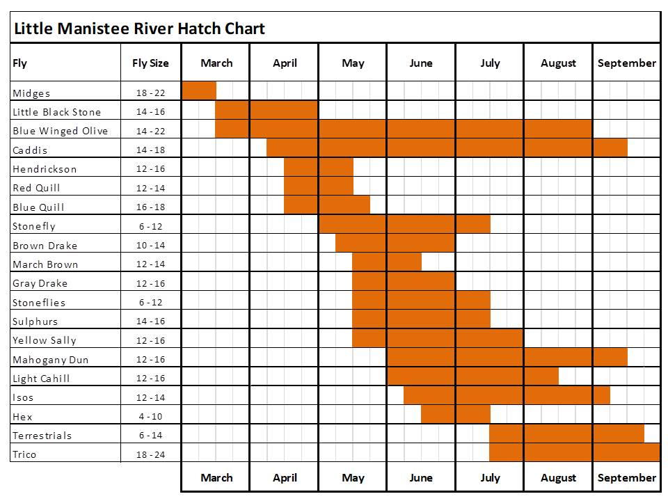 fly fishing hatch chart for the Little Manistee river in Michigan