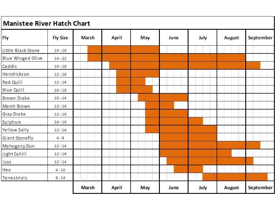 manistee river hatch chart for fly fishing in Michigan