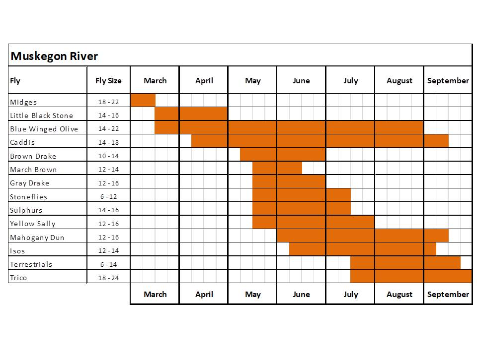 Fly Fishing hatch chart for the Muskegon River in Michigan